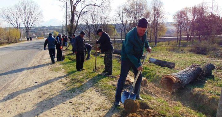 В селе Чишмикиой прошла первая санитарная пятница
