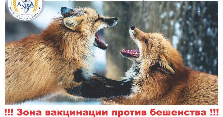 ВНИМАНИЕ!Вакцинация животных!!!