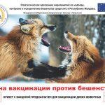ВНИМАНИЕ! Вакцинация диких животных!